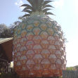 The big pineapple, Nambour