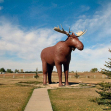 Mac the moose, Moose Jaw, Canada