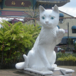 The great cat of Kuching