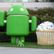 Android at Googleplex,  Palo Alto, California